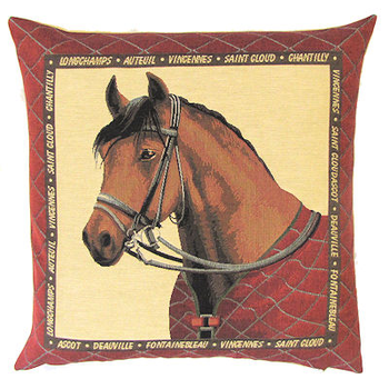 horse with red blanket