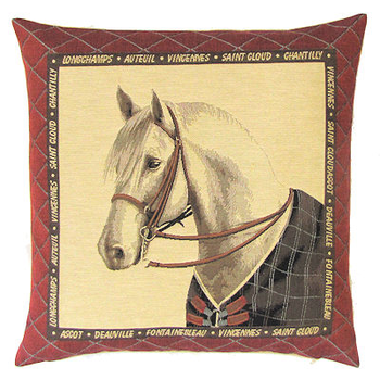 horse with brown blanket
