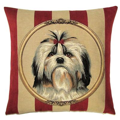 Shih-tzu framed on wallpaper