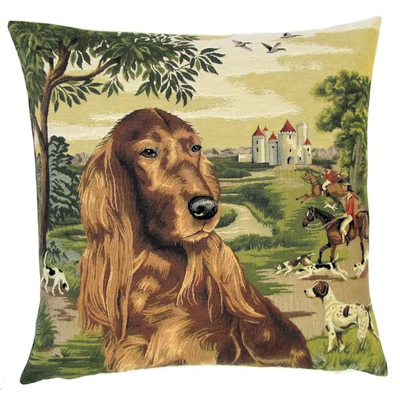 Irish setter in forest setting